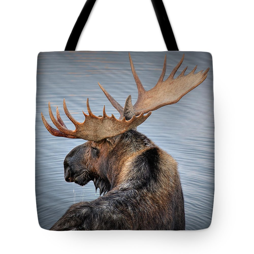 Moose Tote Bag featuring the photograph Moose Drool by Ryan Smith