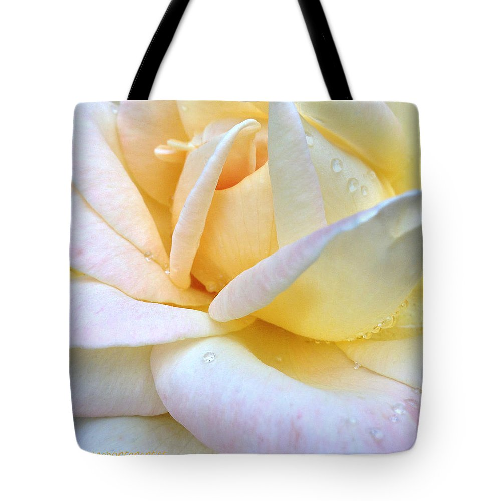 Morning Dew On A Pale Yellow Rose Tote Bag featuring the photograph Morning Dew on a Pale Yellow Rose by Anna Porter