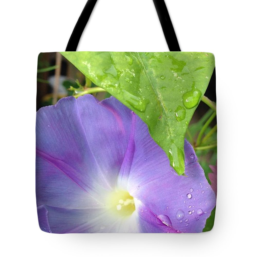 Morning Glory Raindrops Tote Bag featuring the photograph Morning Glory by Deb Schneider