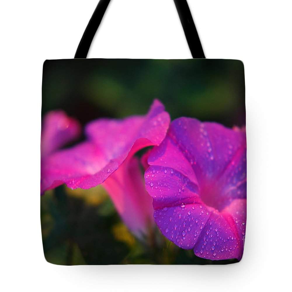 Flora Tote Bag featuring the photograph Morning Glory by Gaspar Avila