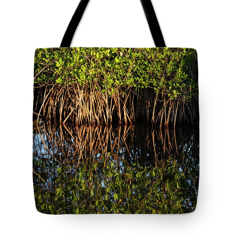 The Everglades Tote Bag featuring the photograph Morning Light Mangrove Reflection by Bob Phillips