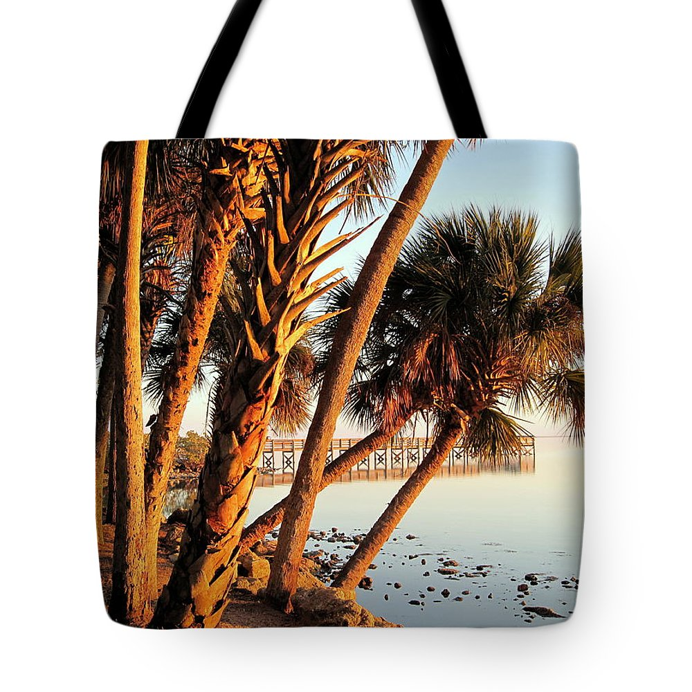 Photography Tote Bag featuring the photograph Morning Lights by Susanne Van Hulst