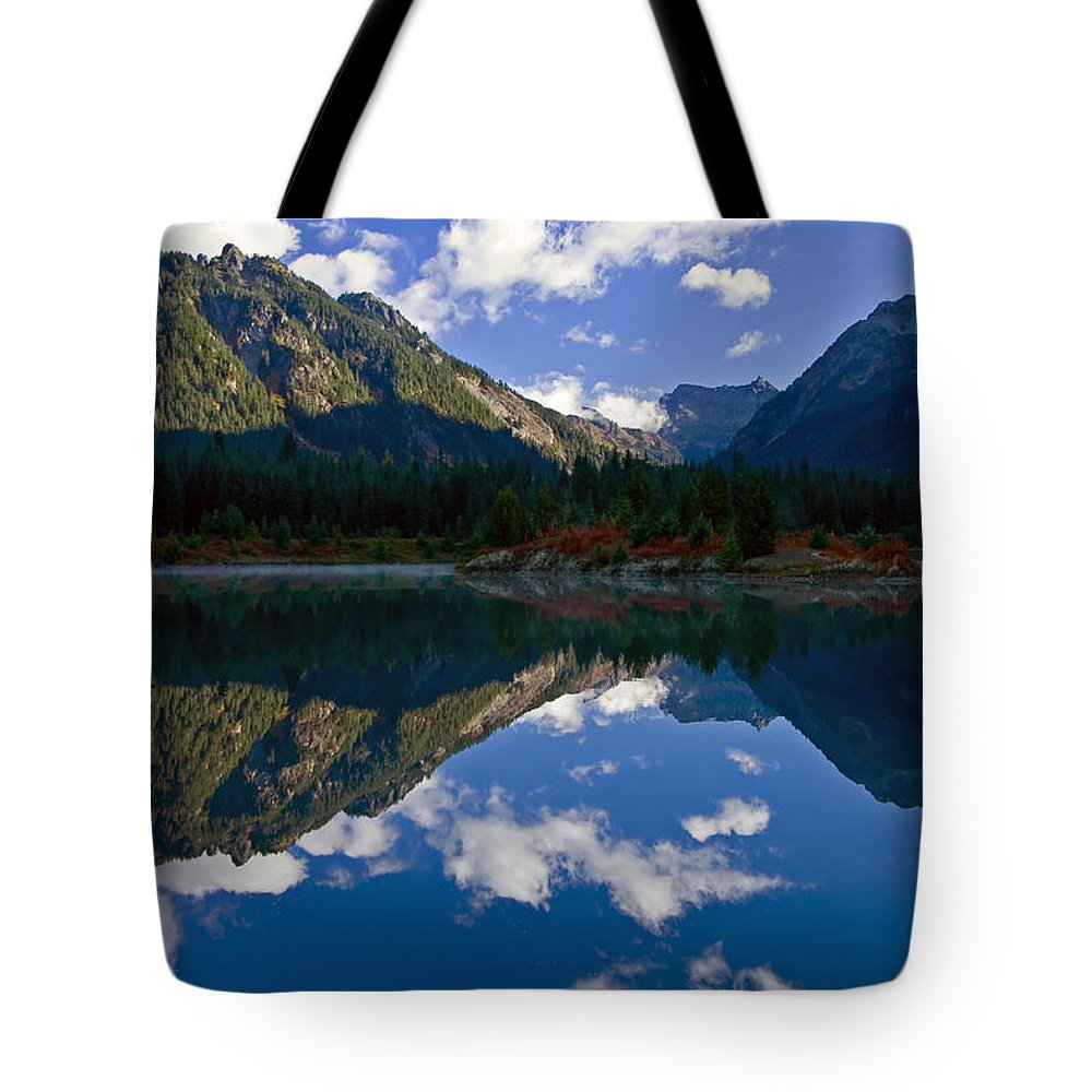 Pond Tote Bag featuring the photograph Morning Musings by Mike Dawson