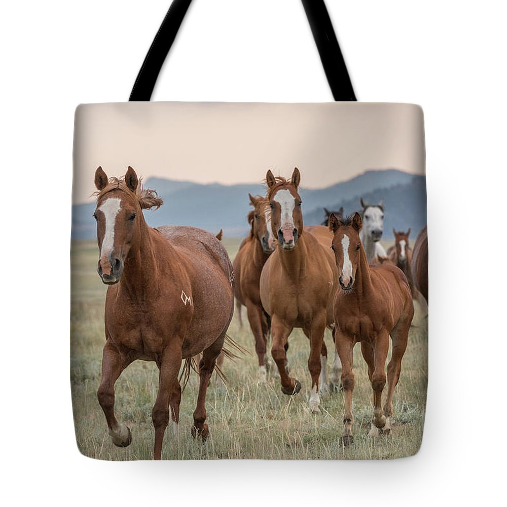 2017 Tote Bag featuring the photograph Morning Run by Terri Cage