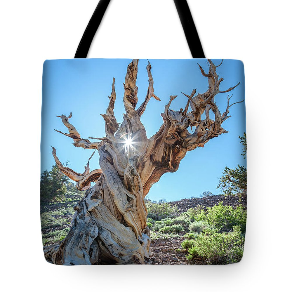 Ancient Tote Bag featuring the photograph Morning Salutation by Olivier Steiner