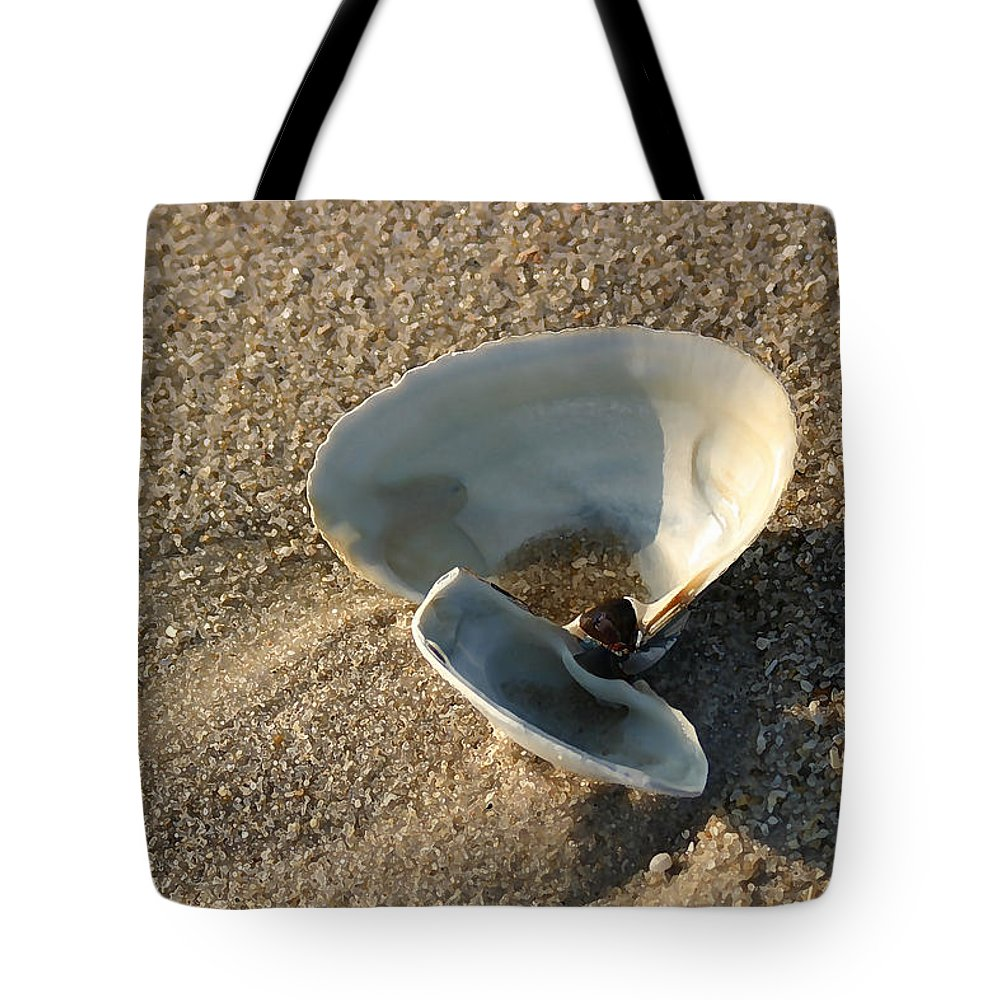 Seascape Tote Bag featuring the photograph Morning Shadow by Mary Haber
