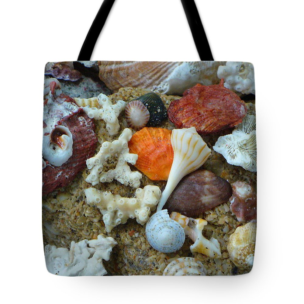 Shells Tote Bag featuring the photograph Morning Treasures by Peggy King