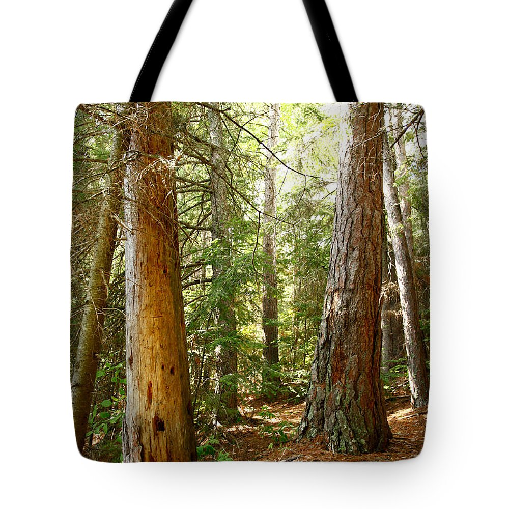 Canada Tote Bag featuring the photograph Morton Pines by Lori Knisely