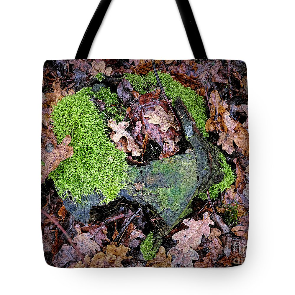 Moss Tote Bag featuring the photograph Moss And Leaves by Elisabeth Lucas