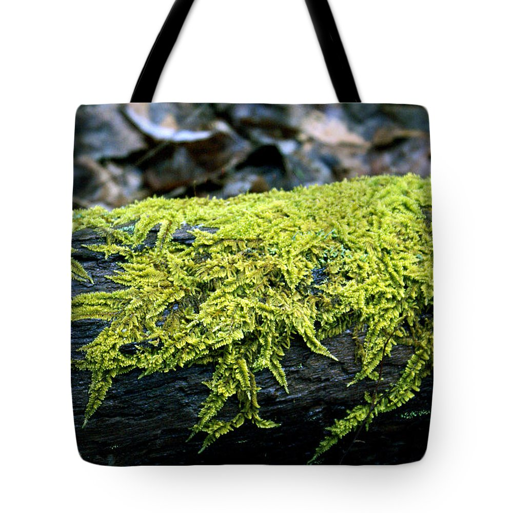 Moss Tote Bag featuring the photograph Mosss On Blackened Log by Douglas Barnett