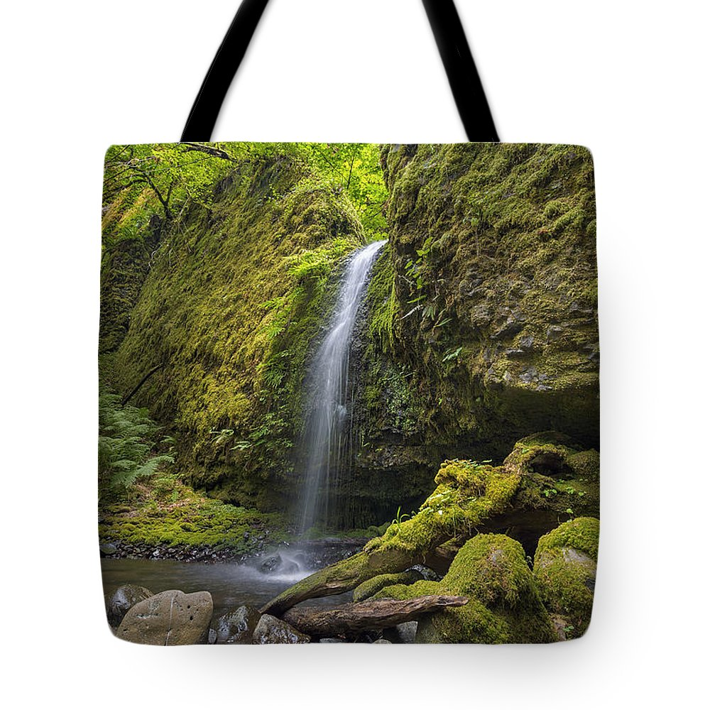Mossy Grotto Falls Tote Bag featuring the photograph Mossy Grotto Falls In Summer by David Gn