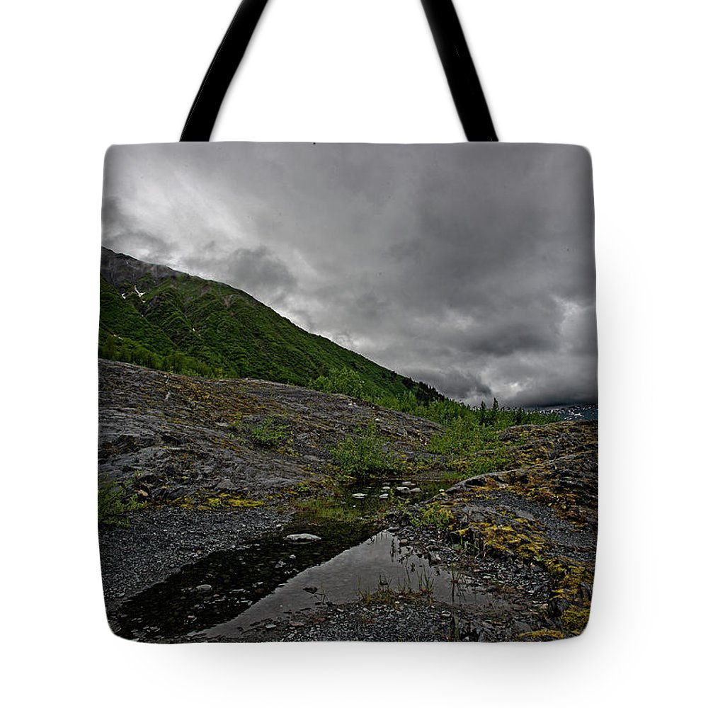 Alaska Tote Bag featuring the photograph Mossy View by Eric Nelson