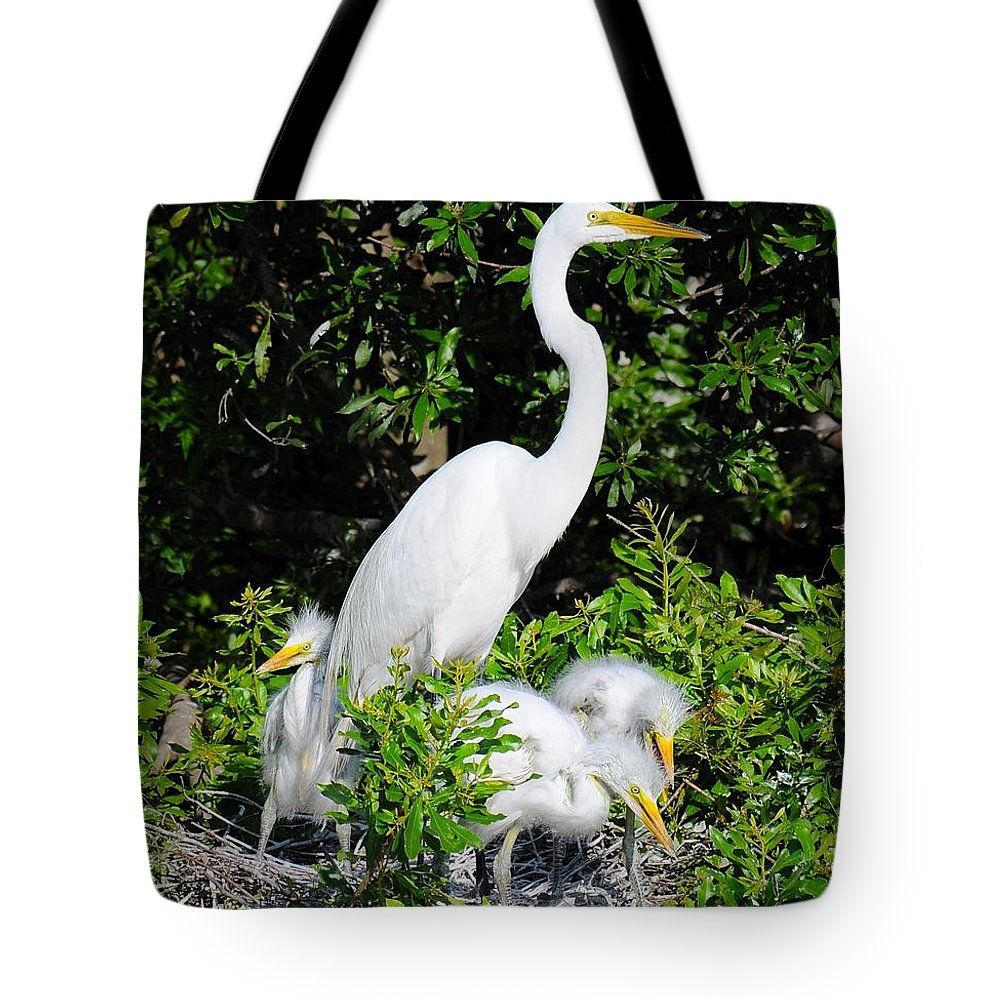 Egret Tote Bag featuring the photograph Mother And Children by John C Saponara Jr