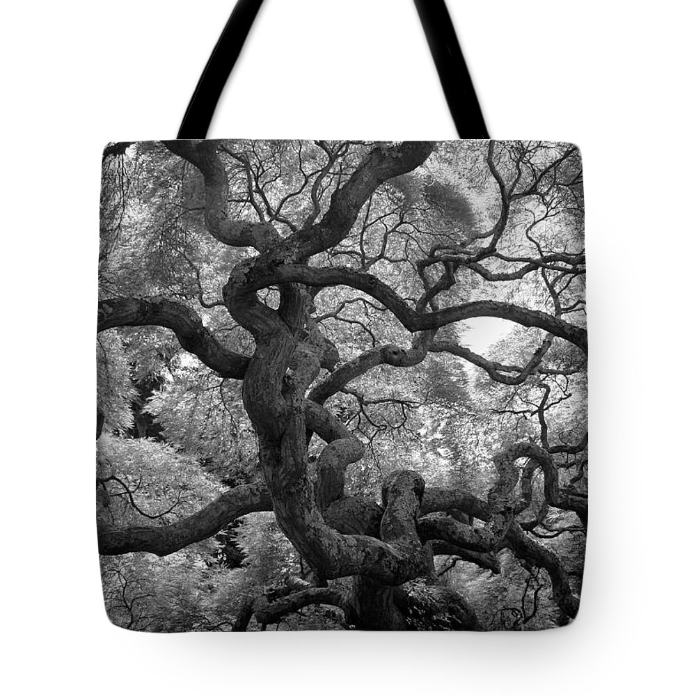 Tree Tote Bag featuring the photograph Motivations by Mitch Cat