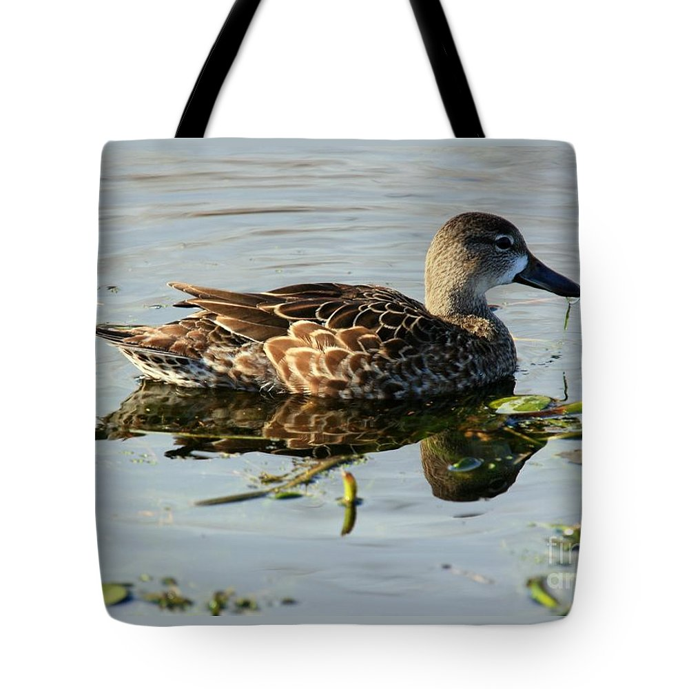 Birds Tote Bag featuring the photograph Mottled Duck by Randy Matthews