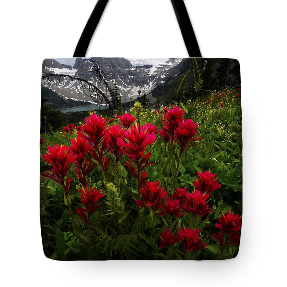 Mount Assiniboine Tote Bag featuring the photograph Mount Assiniboine Canada 11 by Bob Christopher