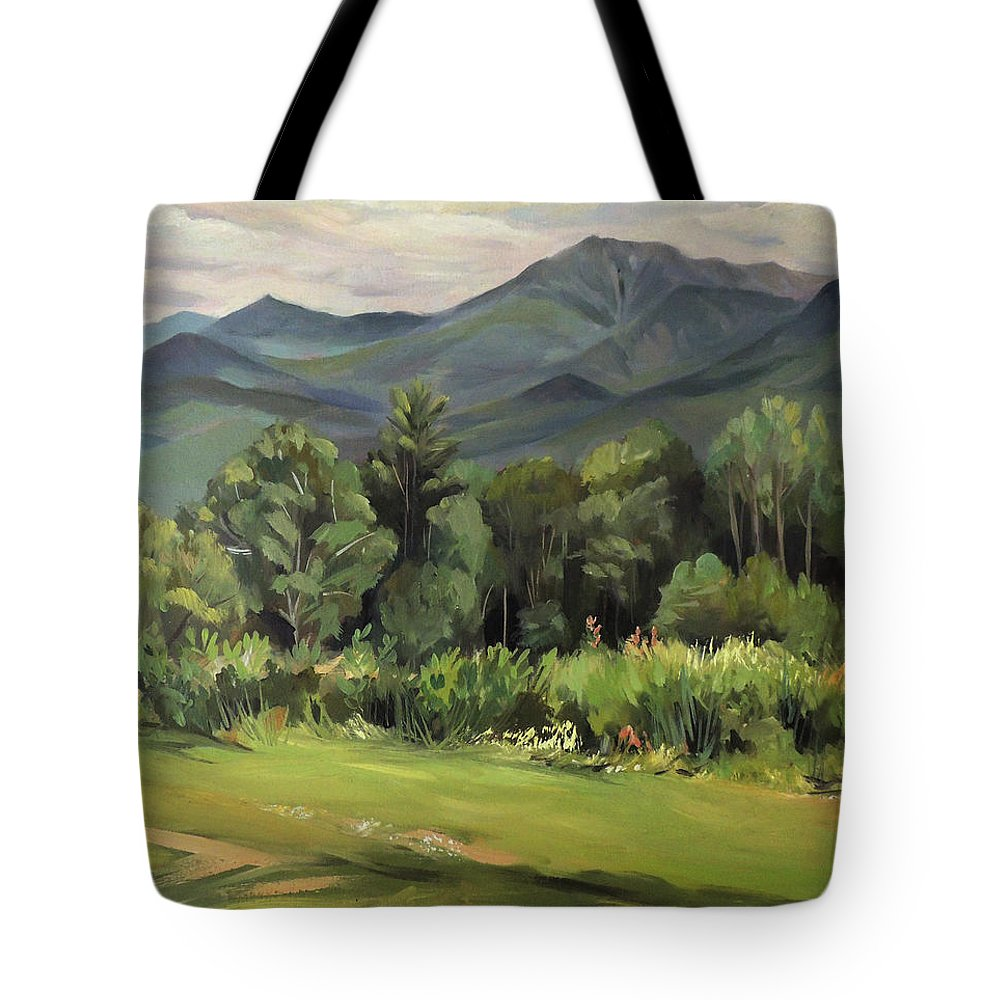 White Mountain Paintngs Tote Bag featuring the painting Mount Lafayette From Sugar Hill New Hampshire by Nancy Griswold