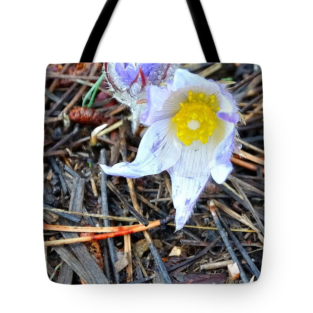 Red Tote Bag featuring the photograph Mount Margaret Spring 14344 by Jerry Sodorff