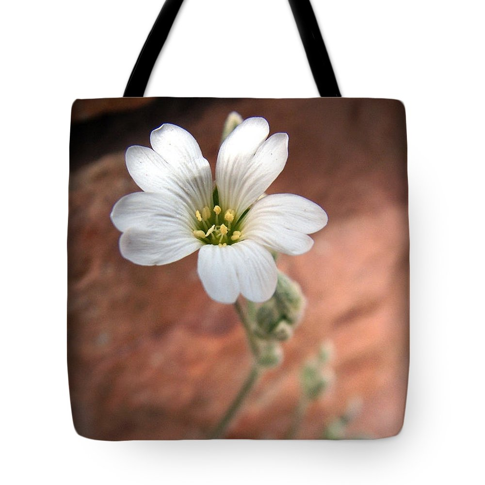 Alpine Tote Bag featuring the photograph Mountain Beauty by RC DeWinter