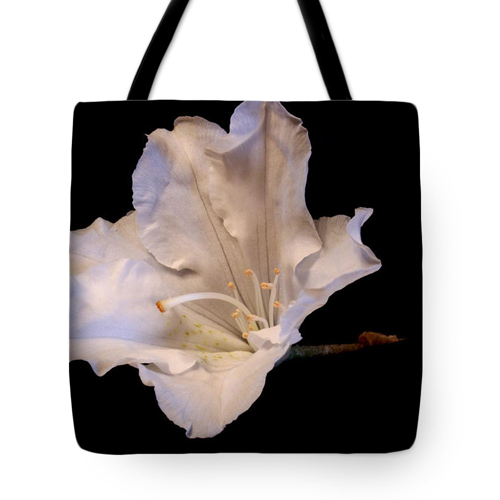 Flower Tote Bag featuring the pyrography Mountain Laurel 2 by Robert Morin