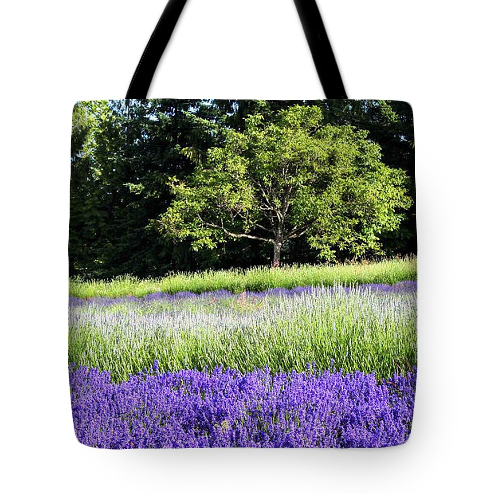 Lavender Tote Bag featuring the photograph Mountainside Lavender Farm by Sherrie Triest