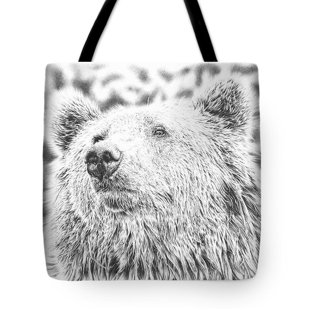 Pencildrawing Tote Bag featuring the drawing Mr. Bear by Remrov