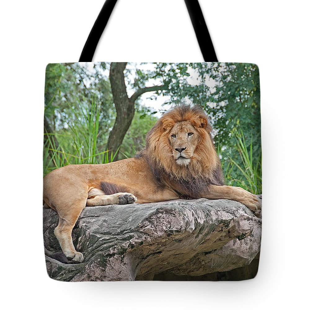Lion Tote Bag featuring the photograph Mr Majestic by John Black
