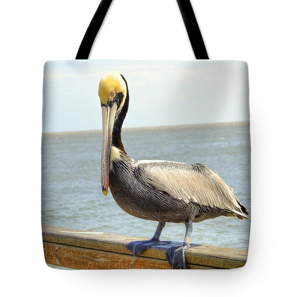 Pelican Tote Bag featuring the photograph Mr. Pelican by Linda Covino