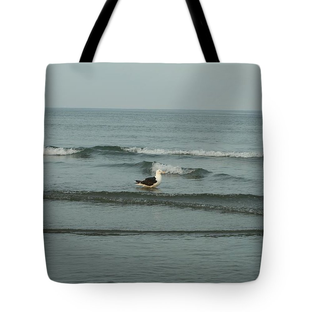 Photography Tote Bag featuring the photograph Mr. Tuxedo by Barbara S Nickerson