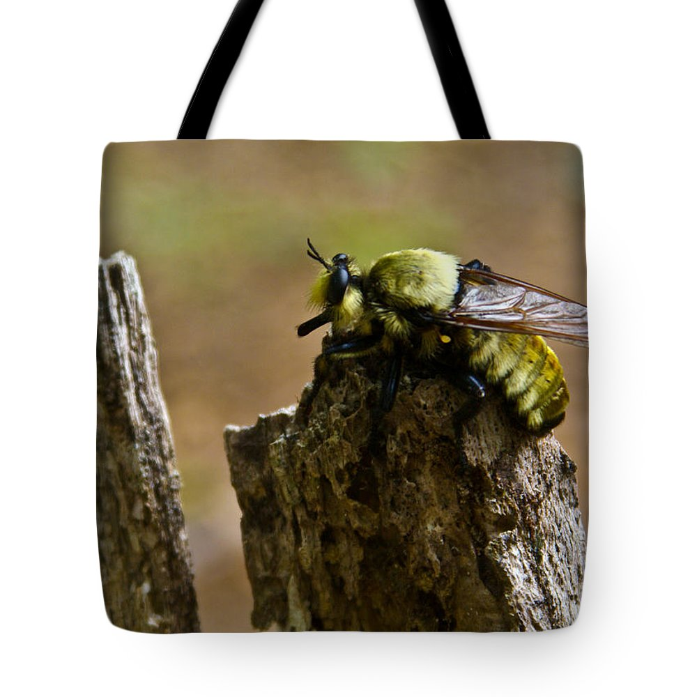 Fly Tote Bag featuring the photograph Mrs. Fly by Douglas Barnett