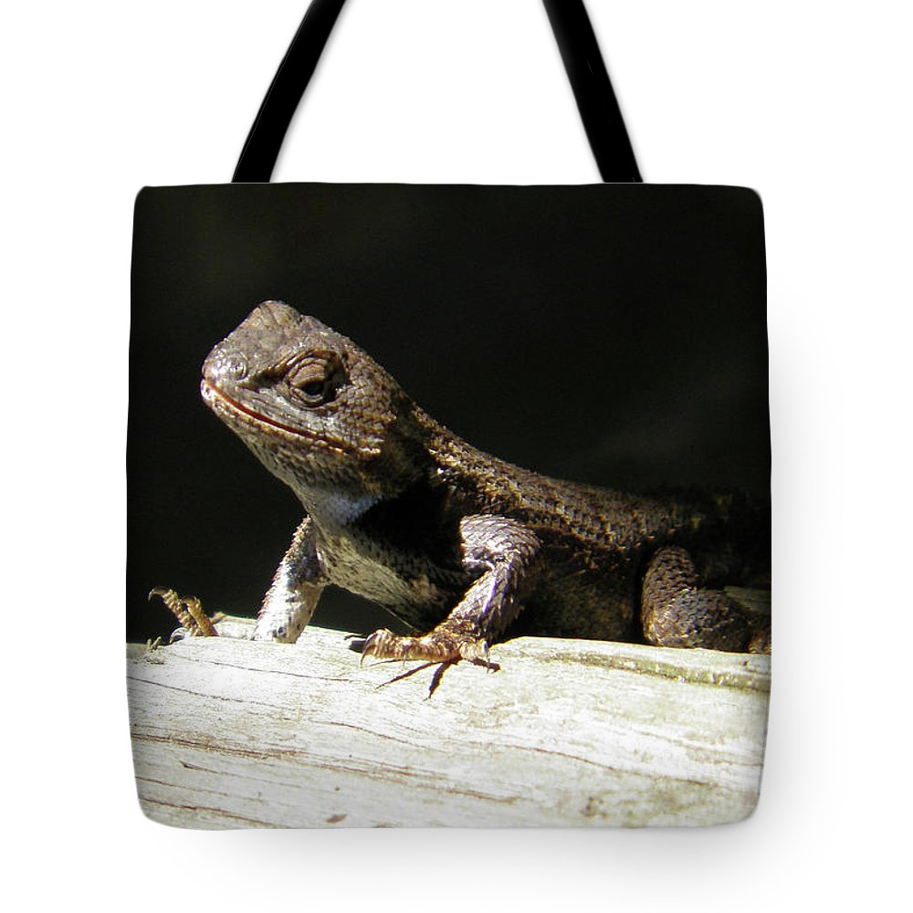 Lizards Tote Bag featuring the photograph Ms. Liz by Angelcia Wright