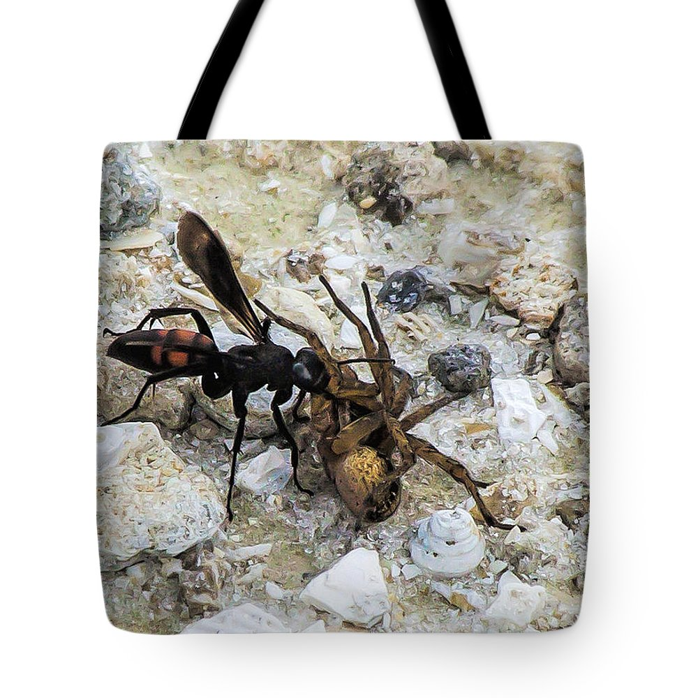 Wasp Tote Bag featuring the photograph Mud Dauber Wasp And Prey by Edelberto Cabrera