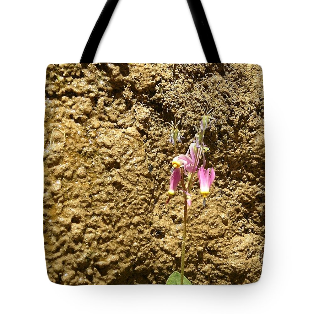 Flower Tote Bag featuring the photograph Mud Wall by Rich Bodane