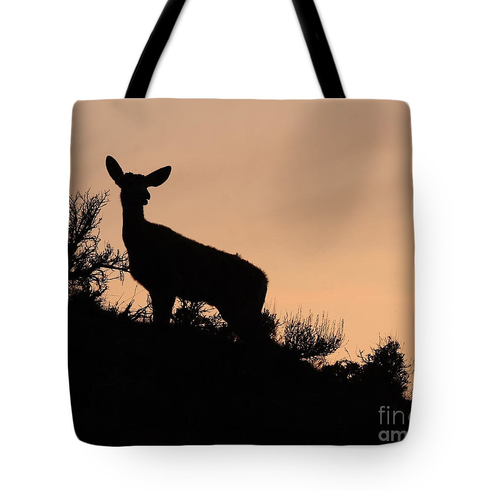 Deer Tote Bag featuring the photograph Mule Deer Silhouetted Against Sunset Ridge by Max Allen