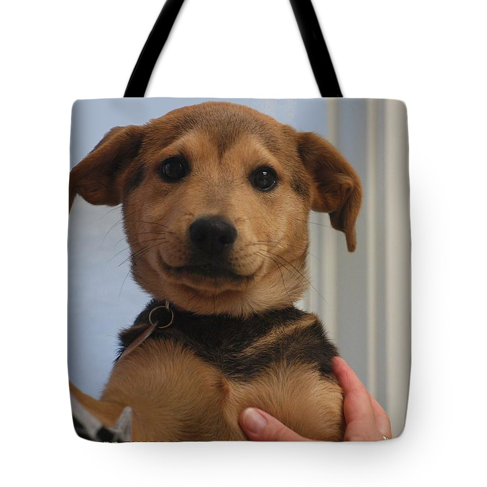 Puppy Tote Bag featuring the photograph Muppet Maya by Allegra Jacobs