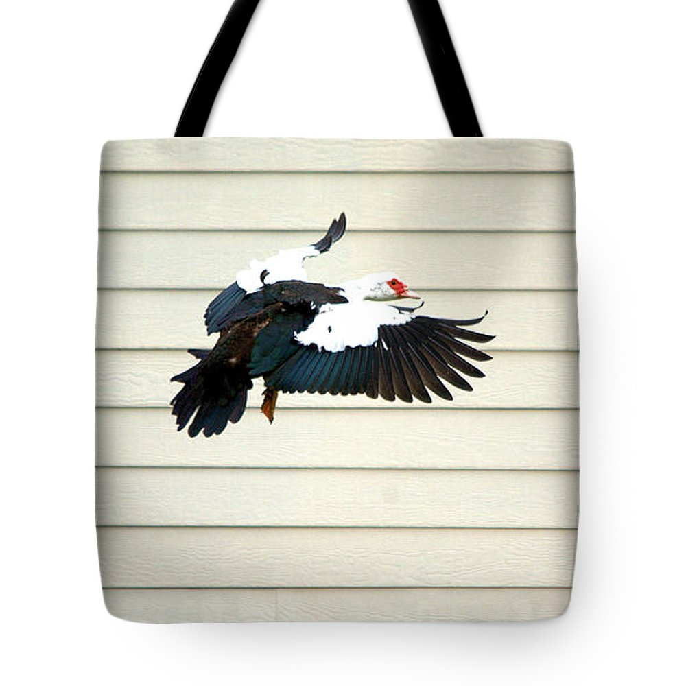 Roy Williams Tote Bag featuring the photograph Muscovy Duck In Flight Passing A Building by Roy Williams