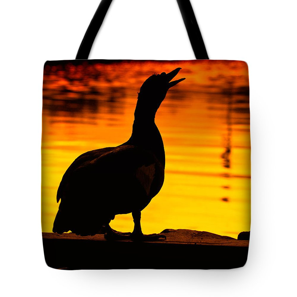 Duck Tote Bag featuring the photograph Muscovy Sunset by Rich Leighton