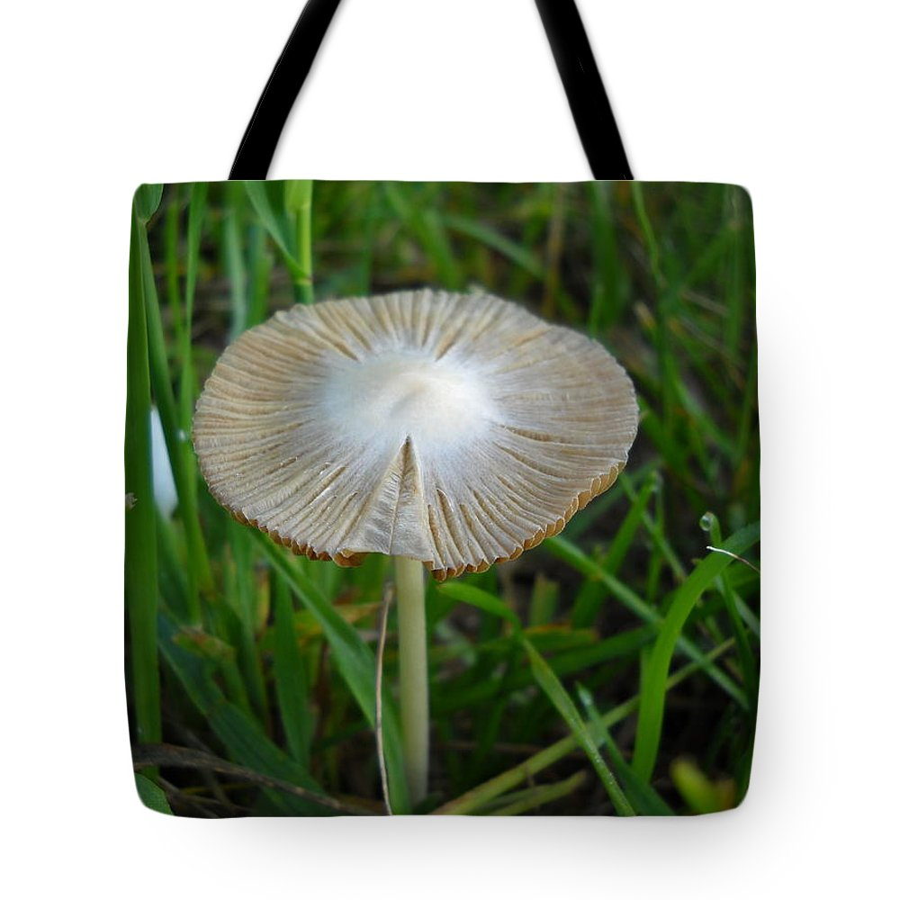 Mushroom Tote Bag featuring the photograph Mushroom In The Grass by Kent Lorentzen