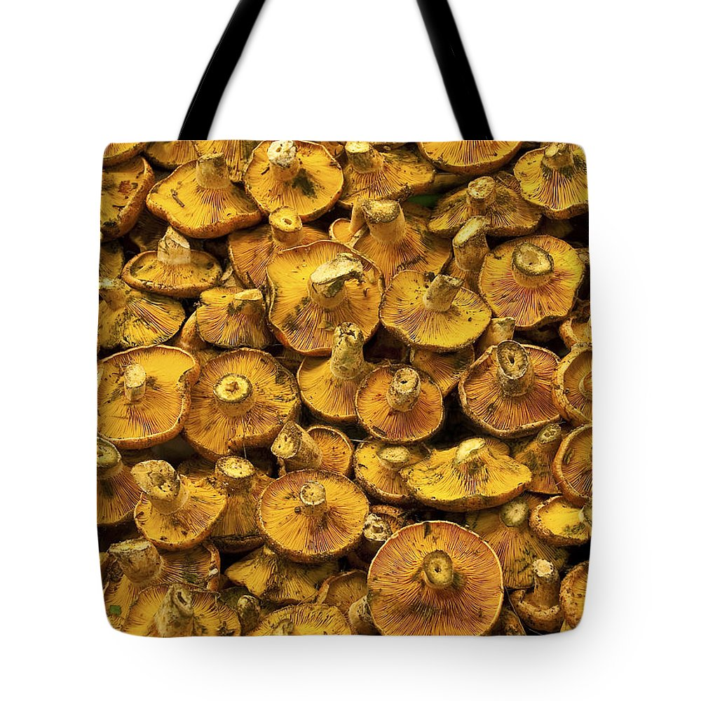 Mushroom Tote Bag featuring the photograph Mushrooms In Spain by Steven Sparks