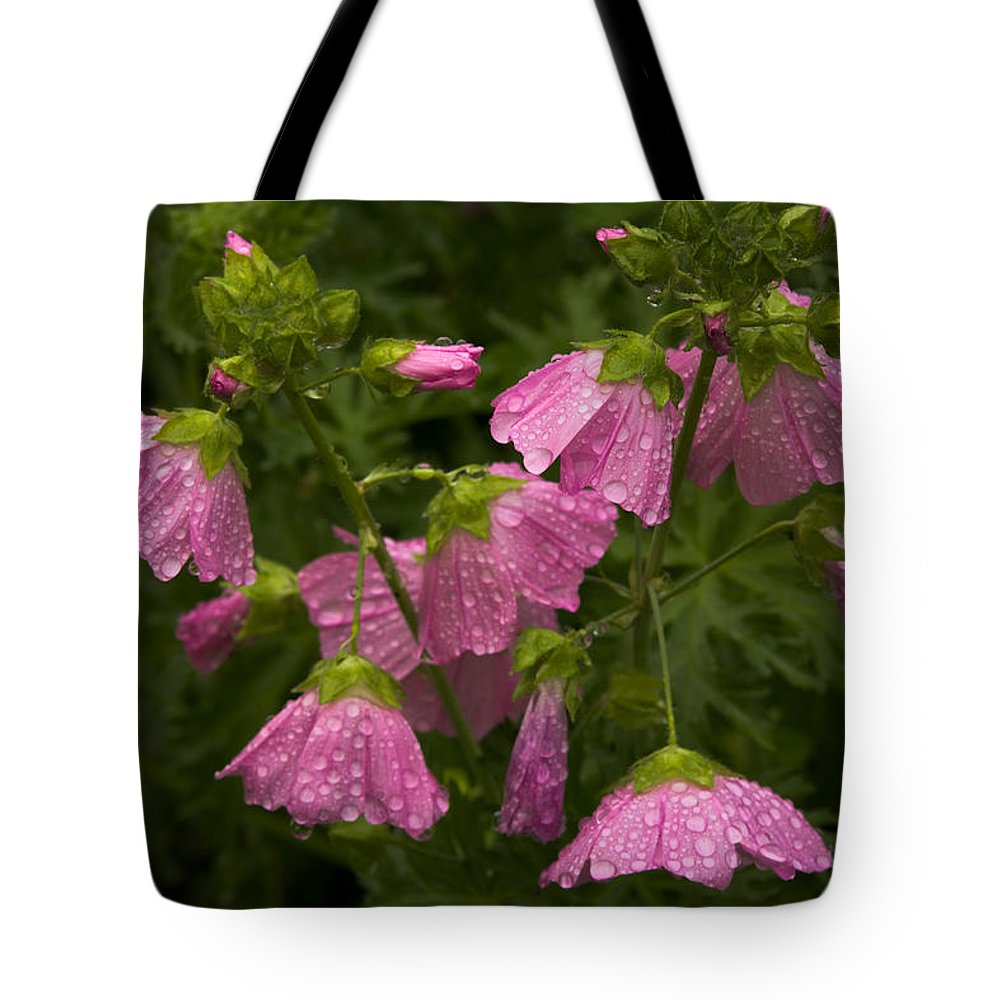 Wildflowers Tote Bag featuring the photograph Musk-mallows Refreshed by Irwin Barrett