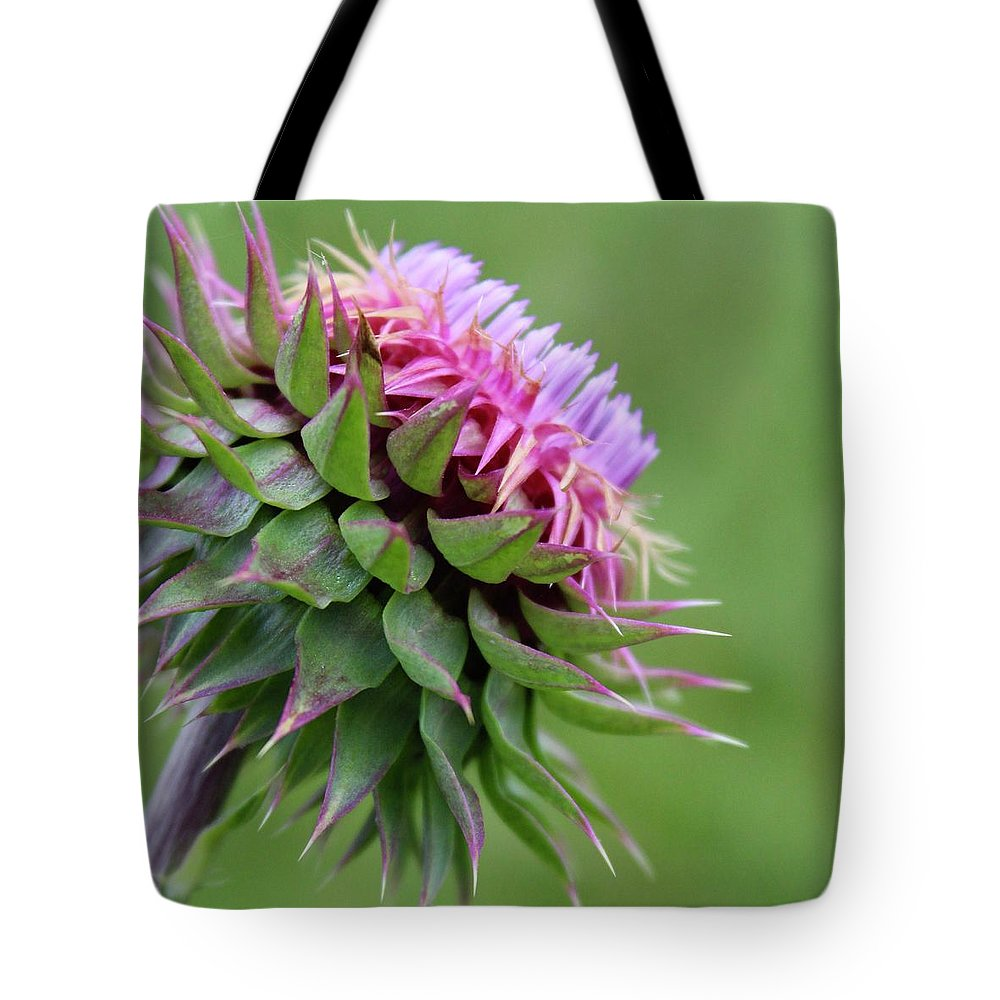 Photograph Tote Bag featuring the photograph Musk Thistle In Bloom by Mandy Elliott