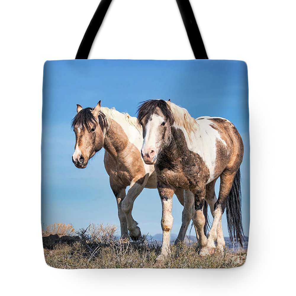 Horse Tote Bag featuring the photograph Mustang Twin Stallions by Rob Daugherty