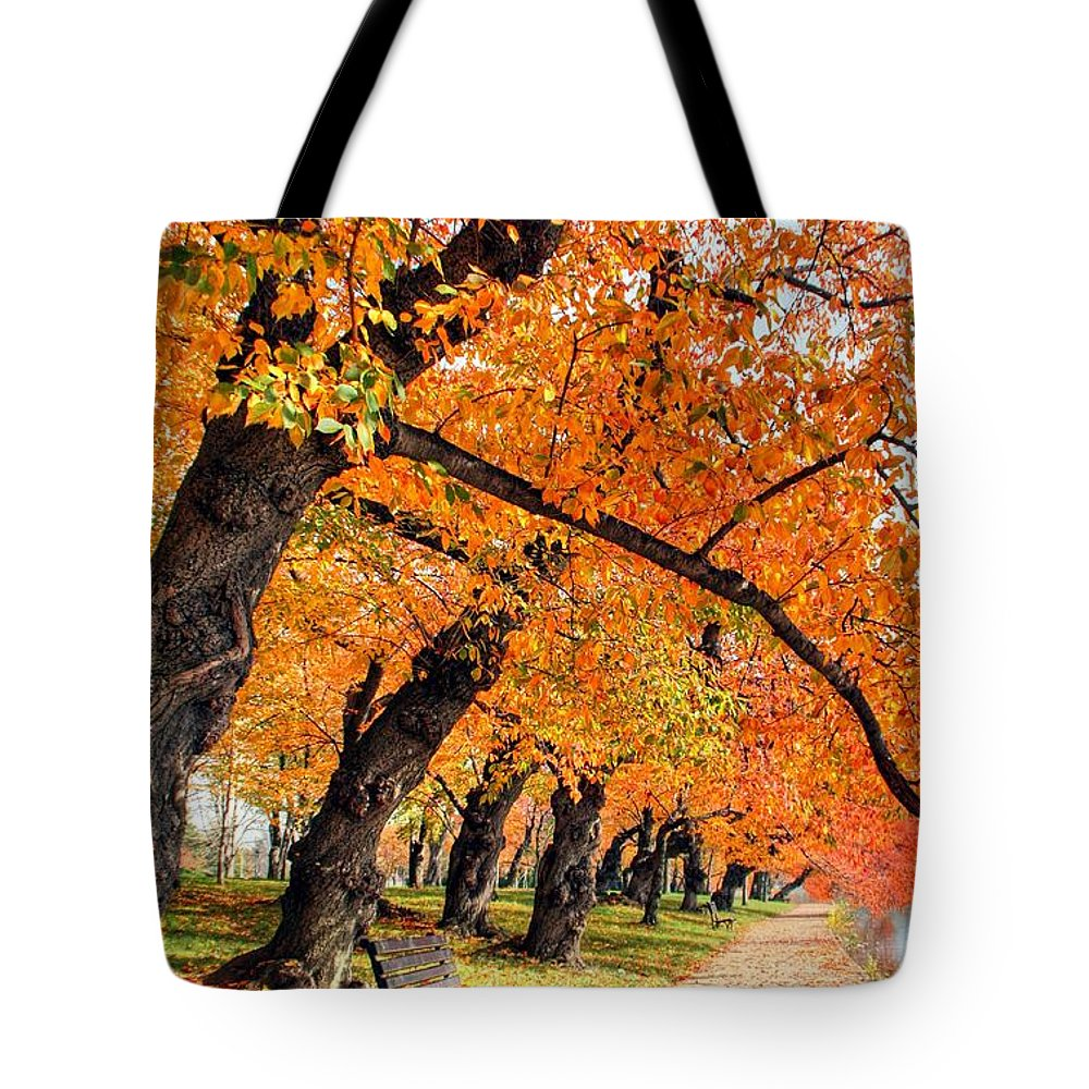 Autumn Tote Bag featuring the photograph Mute Appeal by Mitch Cat