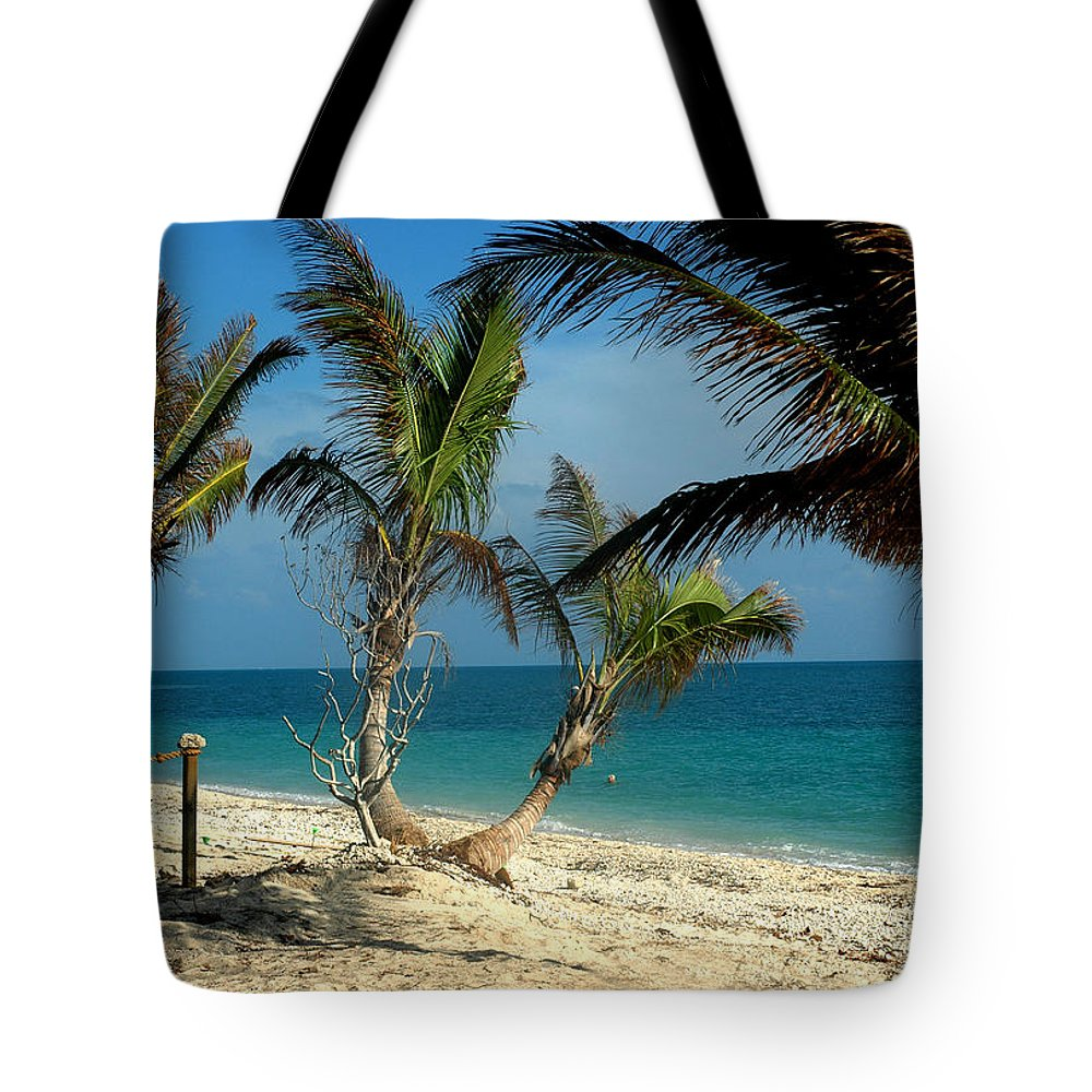 Photography Tote Bag featuring the photograph My Favorite Beach by Susanne Van Hulst