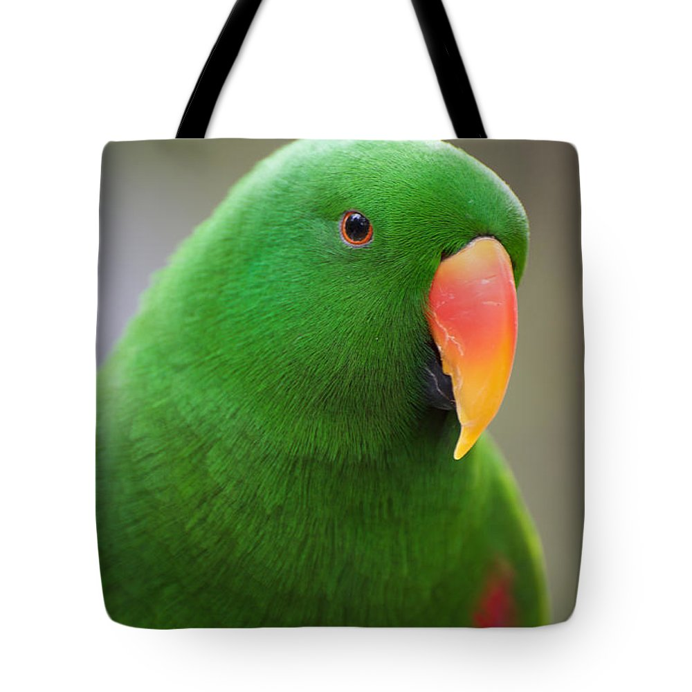 Australian Tote Bag featuring the photograph My Friend Kazuko by Graham Palmer
