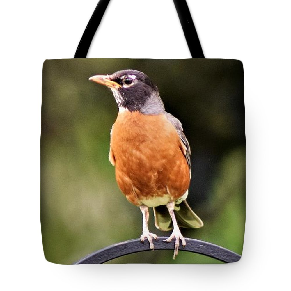 Robin Tote Bag featuring the photograph My Good Side by Cassandra Dice