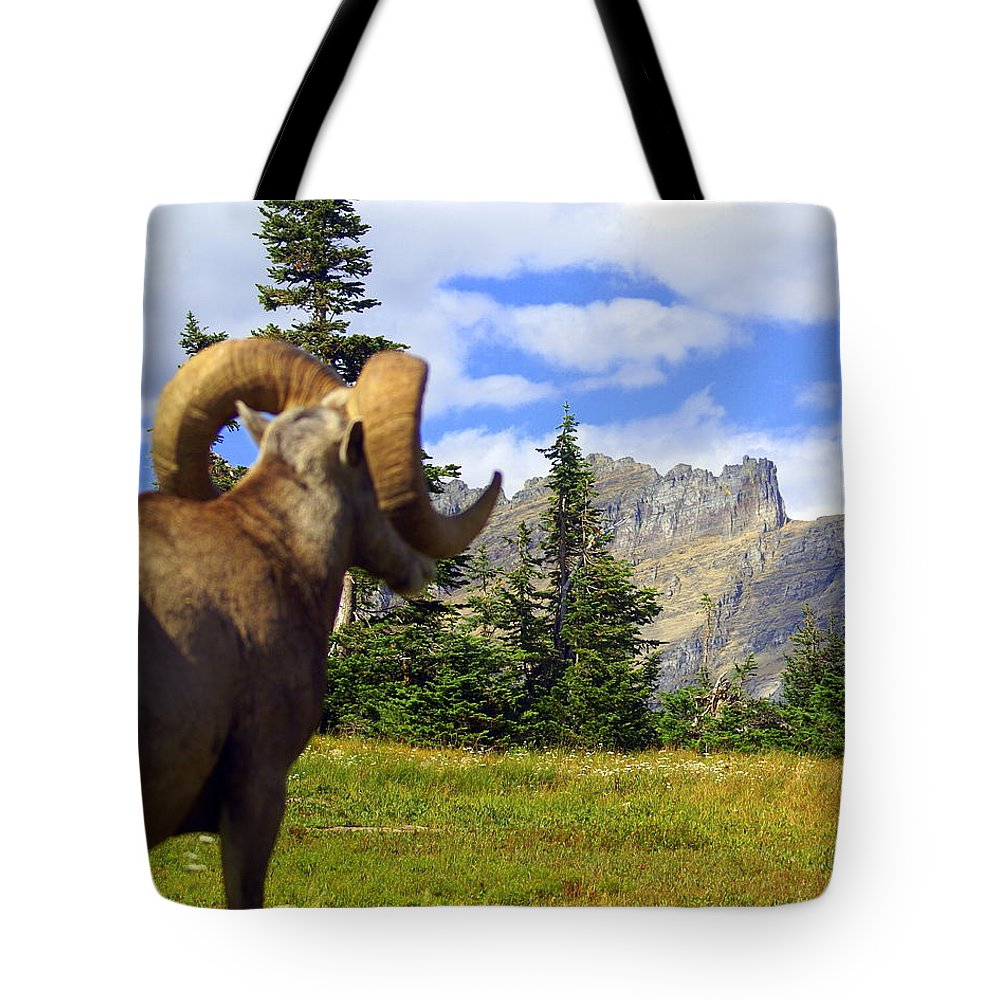 Glacier National Park Tote Bag featuring the photograph My Kingdom by Marty Koch