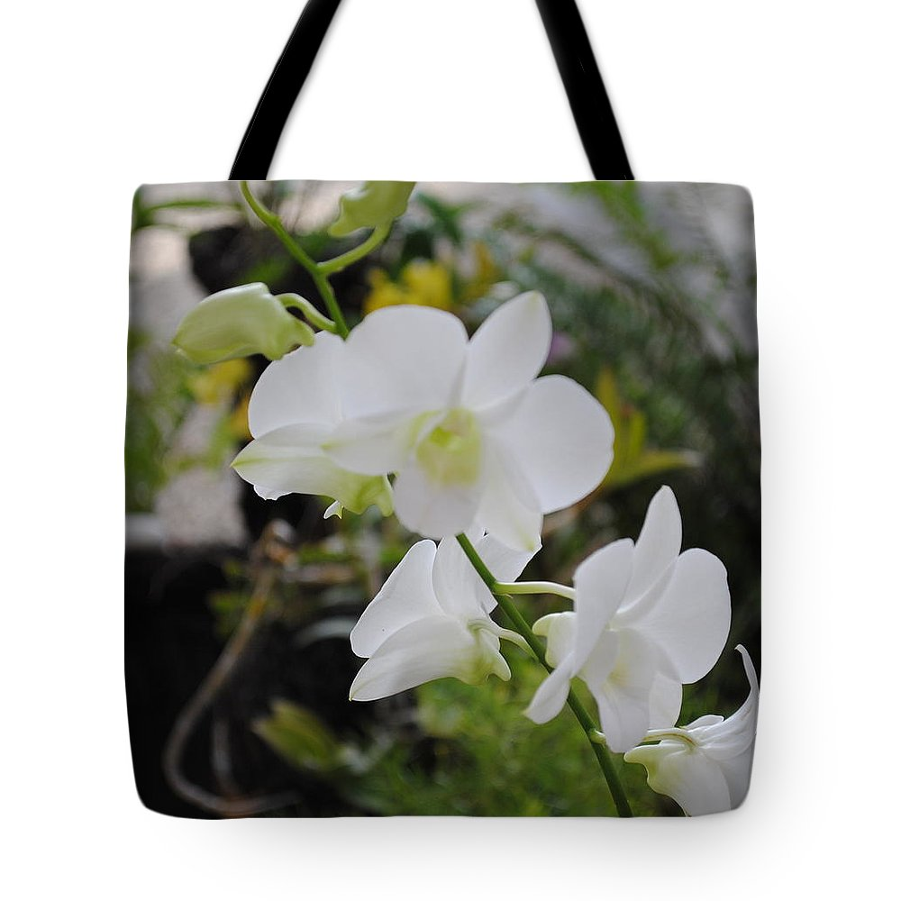 Photo Of Flowers. Beautiful White With A Spot Of Yellow Orchid Surrounded By Ferns Surrounded By Ferns Grown In Fiona's Tropical Garden In Her House In Sosua Tote Bag featuring the photograph My Orchids # 10 by Fiona Dinali