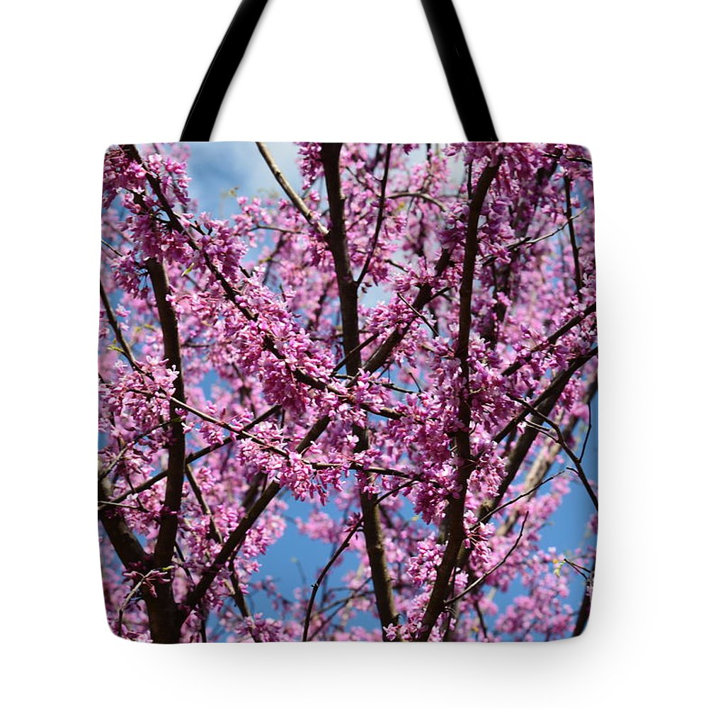 My Redbuds In Bloom Tote Bag featuring the photograph My Redbuds In Bloom by Maria Urso