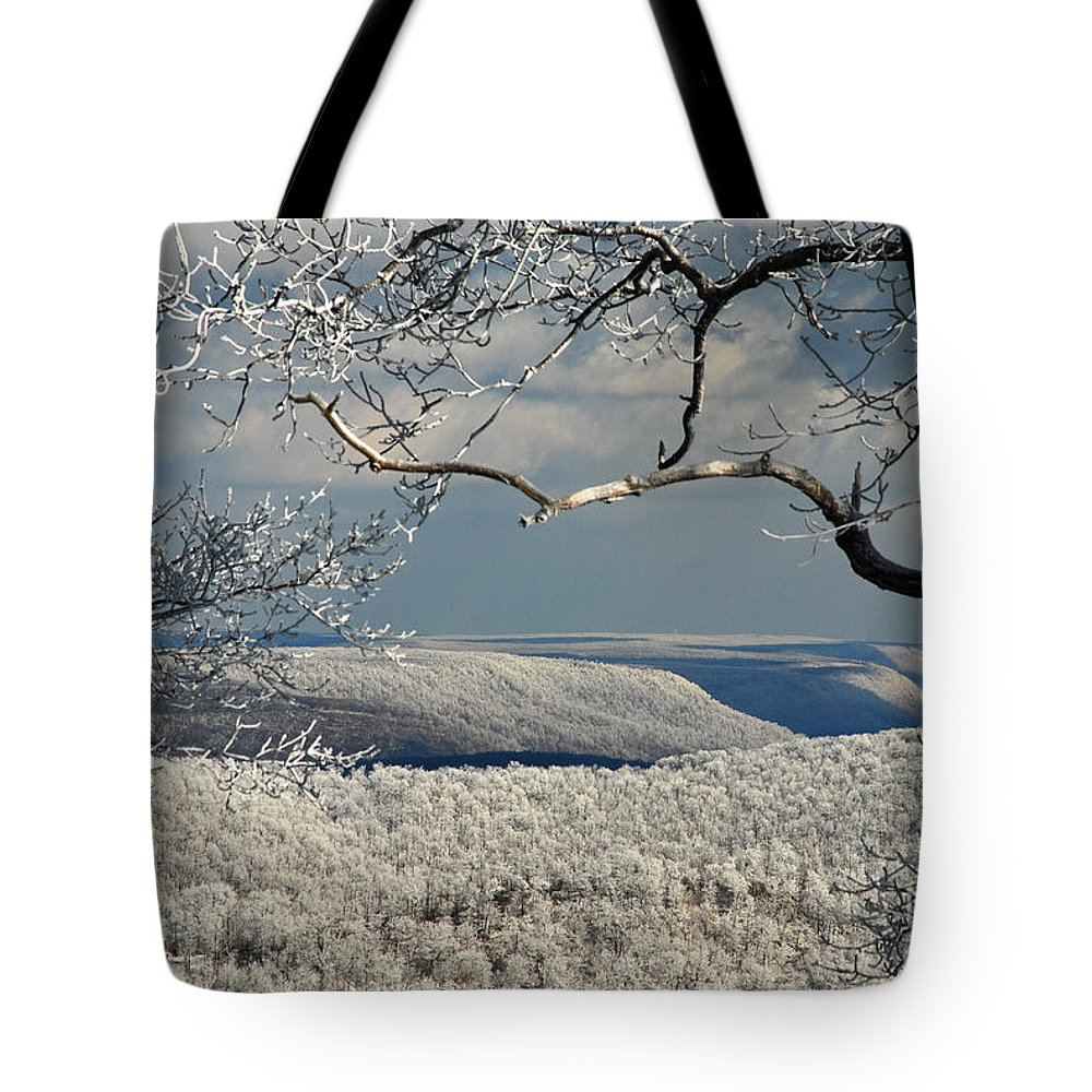 Winter Tote Bag featuring the photograph My Sunday by Lois Bryan